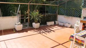 giardino new