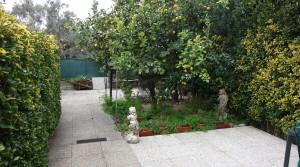 giardino fronte1