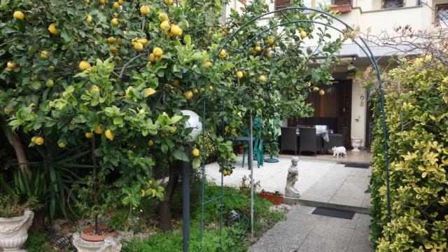 Santa Marinella – Prato del Mare