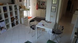 soggiorno con angolo cucina2