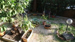 giardino fronte2
